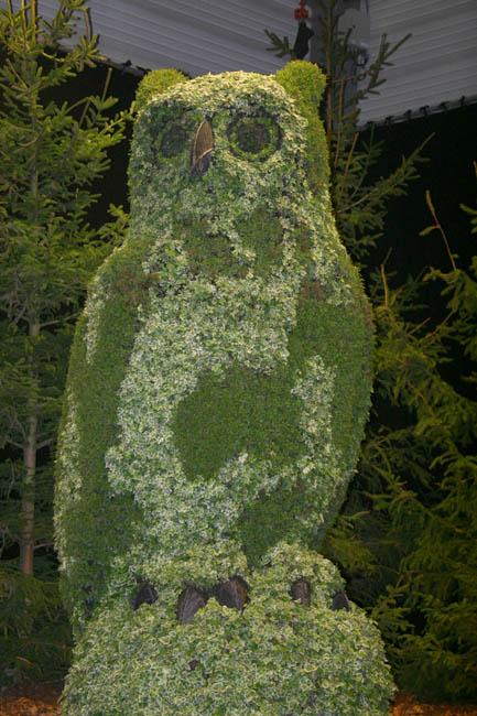 Flora 065