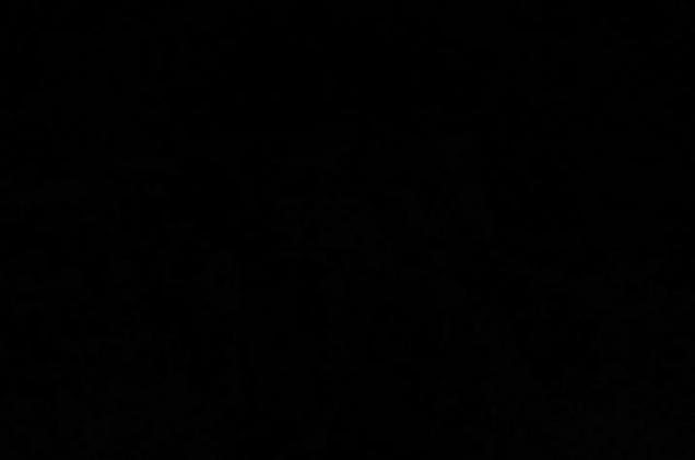 donker.JPG