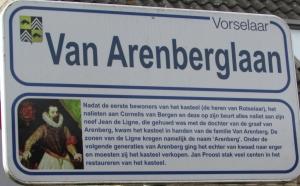 Van Arenberglaan.JPG